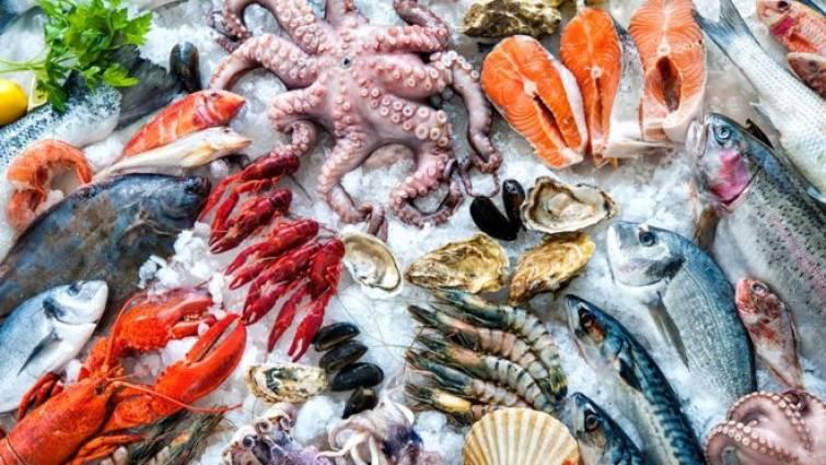 pescados-y-mariscos.jpg