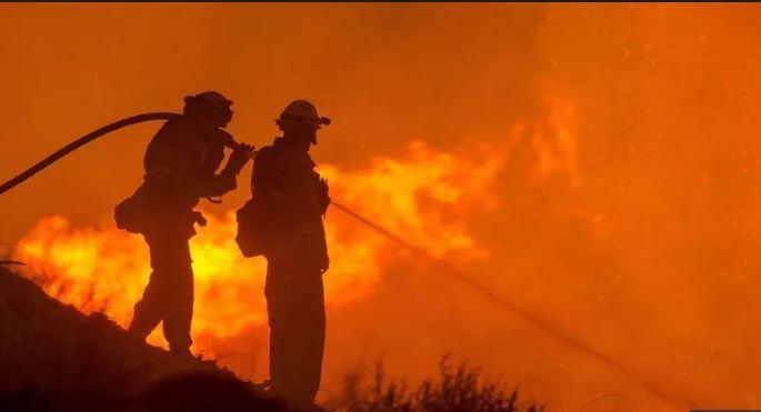 incendios-forestales.jpg