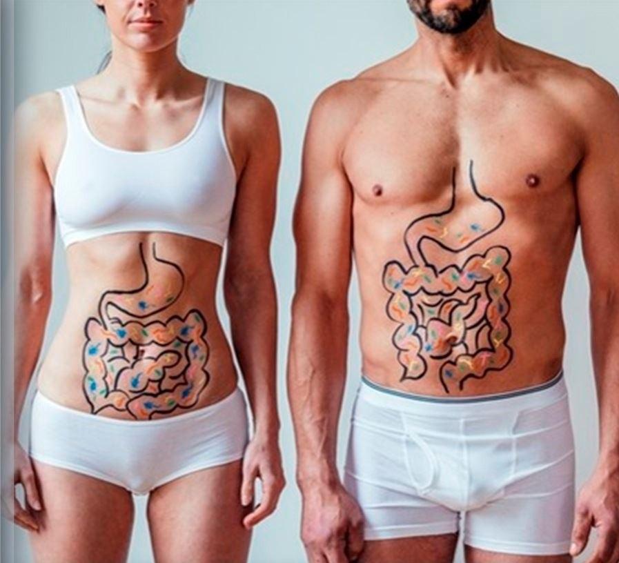 Salud-Gastrointestinal.jpg