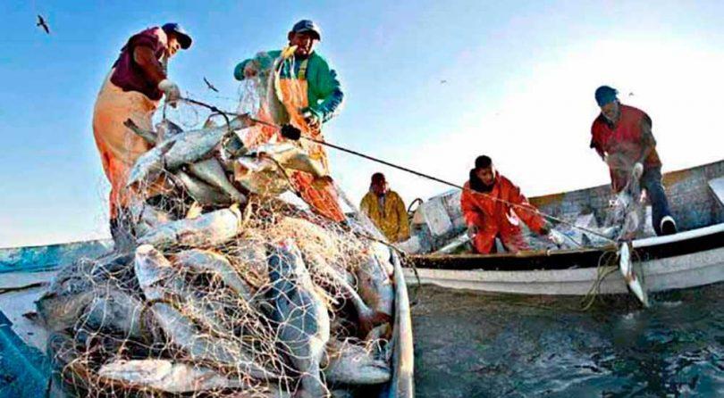 Busca-LXIV-Legislatura-establecer-la-pesca-y-la-acuacultura-como-actividades-primarias.jpg