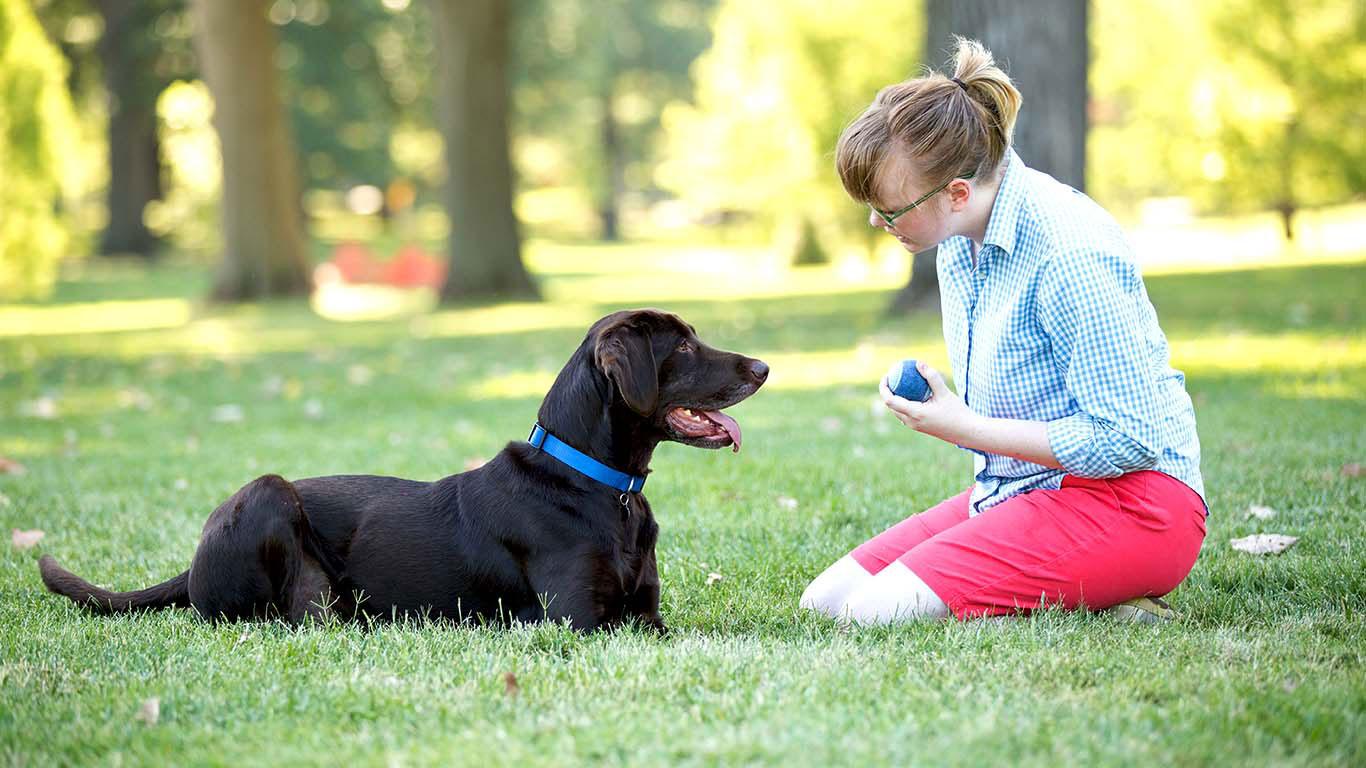 Tips-para-cuidar-perros-como-todo-un-experto.jpg